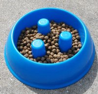 brake-fast doggie bowl