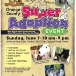 Orange County Super Pet Adoption