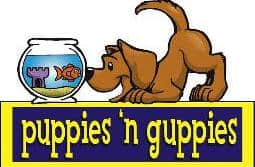 Puppies and Guppies