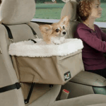 Dog Friendly Toyota Venza
