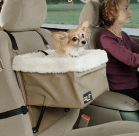 Dog Friendly Toyota Venza