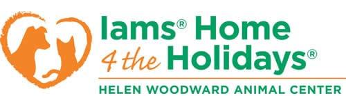 IAMS Home 4 the Holidays