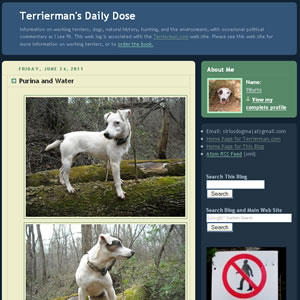 Terrierman's Daily Dose