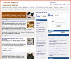 Animal Shelter Tips