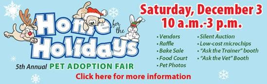 Home for the holidays pet adoption fair