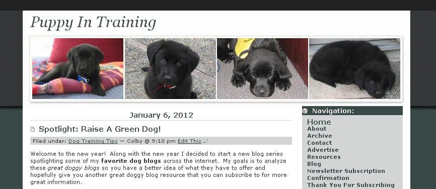 First Blog Theme