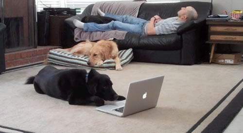 Linus Working