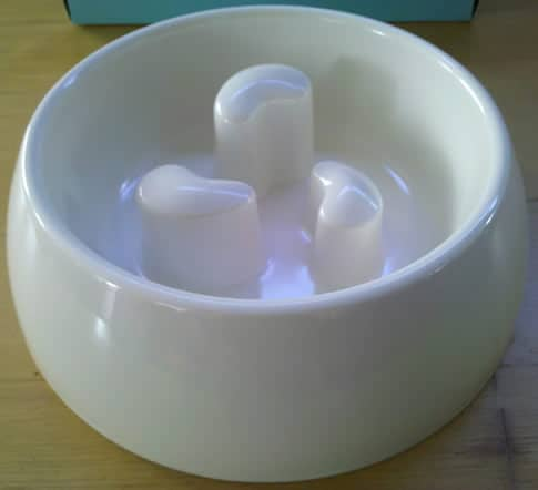 Full View of the Martha Stewart Pets Slow Feeder Dog Bowl