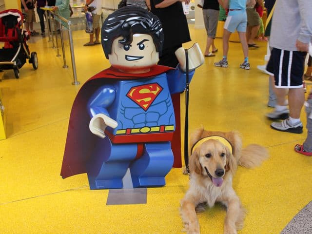 Lego My Dog Superman