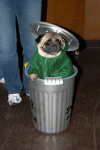 Oscar the Grouch Dog Costume