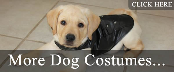 More cute dog costumes