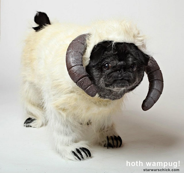 Star Wars Wampa Ice Create Doggy Costume