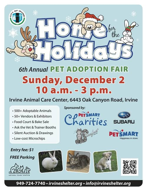 Home For The Holidays Pet Adoption