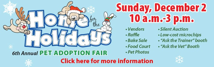 Pet Adoption Fair