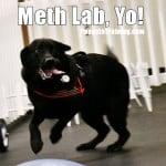 Meth lab, Yo!