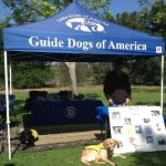 Pups Tagg and Duncan at GDA Booth