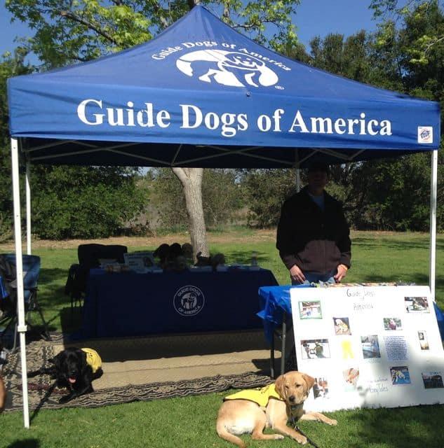 Pups Tagg and Duncan at GDA Booth