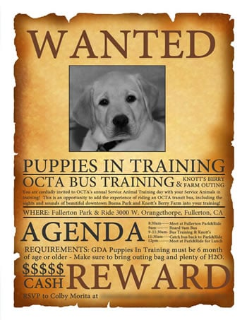 OCTA Bus Training for Pups