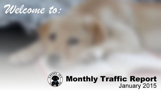 Puppy In Training Traffic Report