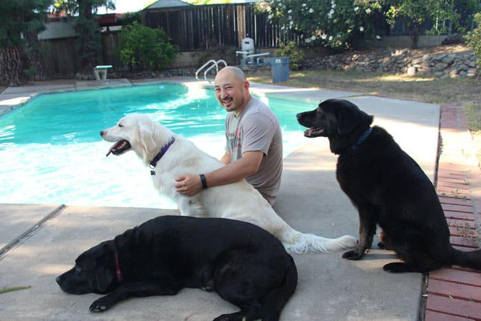 I shave my head, but not my dogs