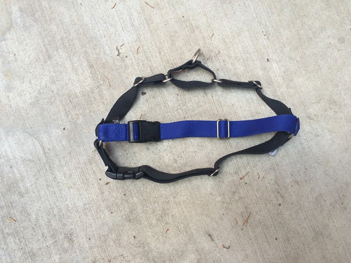 Eco Easy Walk Dog Harness