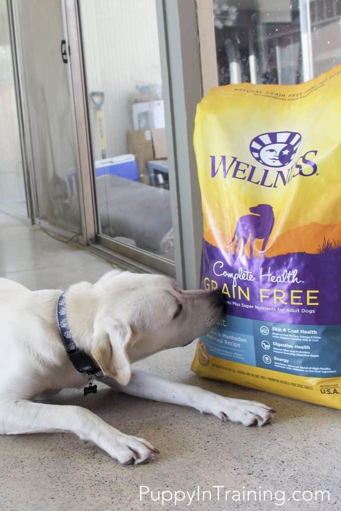 New Wellness Complete Health Line Dog Food