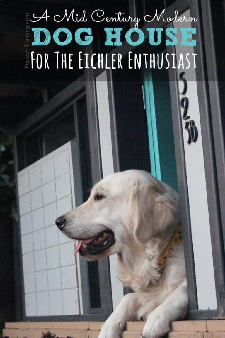 A Mid Century Modern Dog House For The Eichler Enthusiast