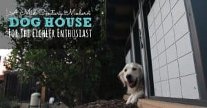 Raven loves her mid century modern dog house! She must be an Eichler enthusiast :)