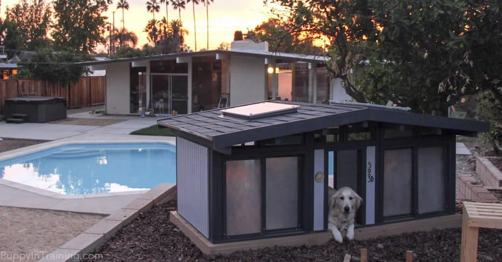 A Mid Century Modern Dog House For The Eichler Enthusiast