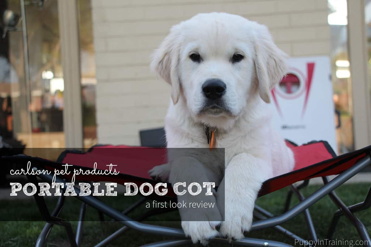 First Look: Carlson Portable Dog Cot Review. We really liked this elevated portable dog cot...