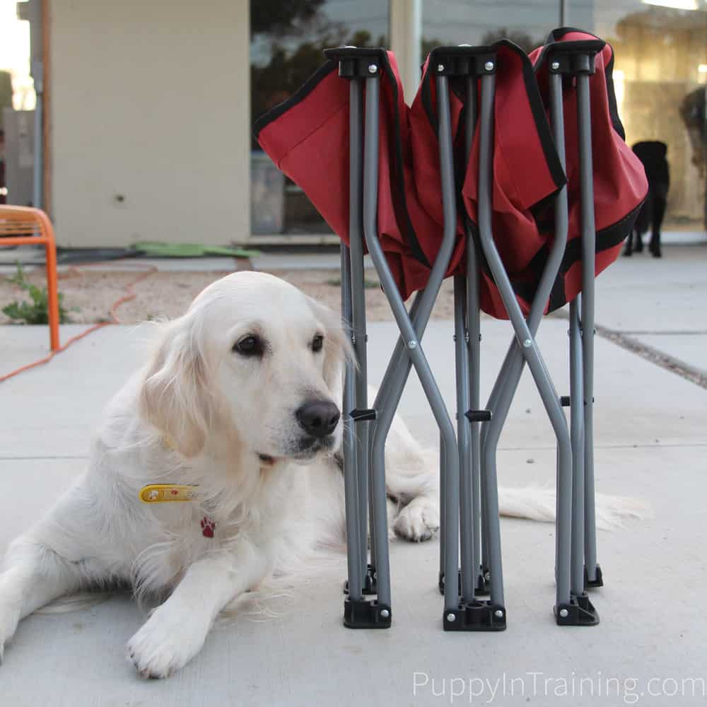 Our review of the Carlson Portable Dog Cot.