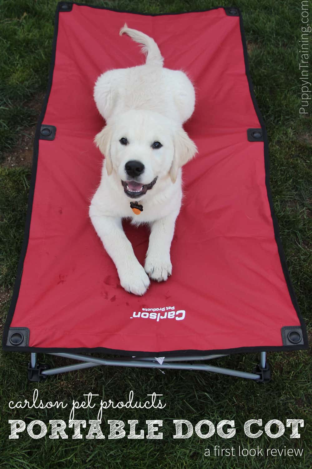 Carlson Portable Dog Cot Review. Our first look at the portable dog bed. Great for camping, hiking, backpacking...and other outdoor activities.