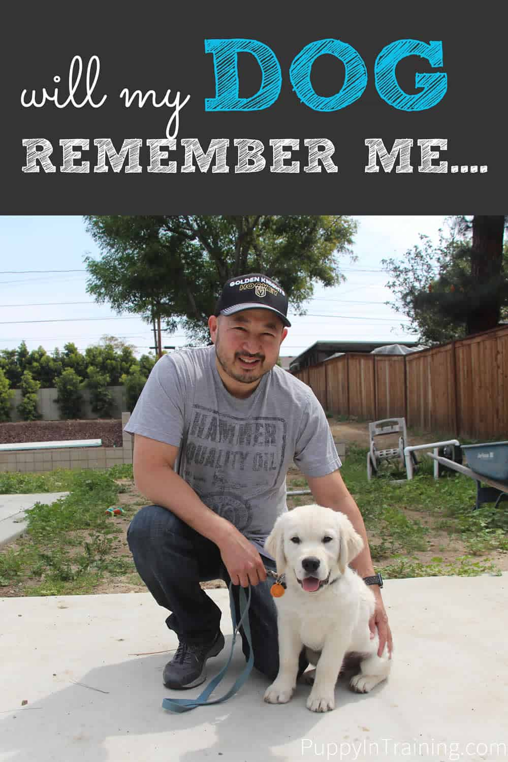 Have you ever been separated from your dog for weeks, months, or years? Did he remember you?