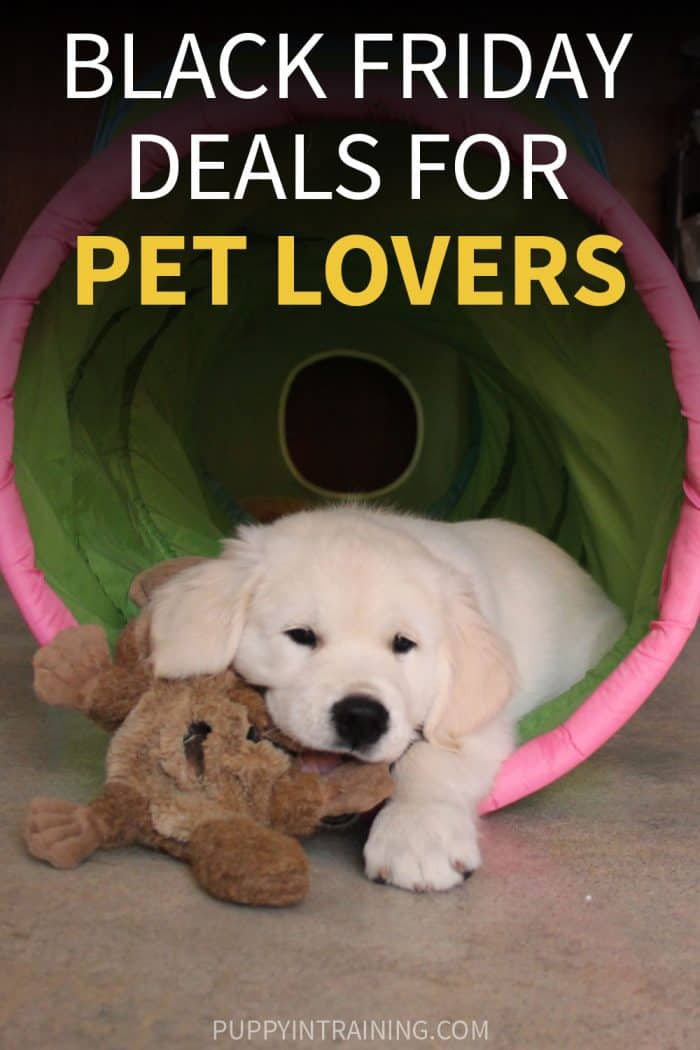 Black Friday Deals For Pet Lovers - Golden Retriever puppy hanging out in his puppy tunnel chewing on plush dog toy.