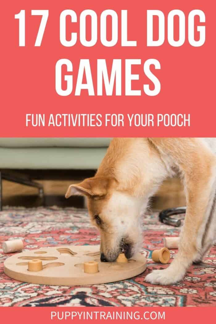 17 Cool Dog Games: Fun Activities For Your Pooch - Yellow dog playing with a puzzle toy