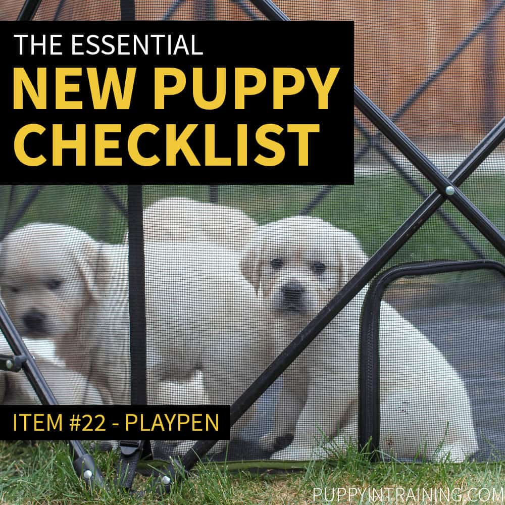 New Puppy Checklist - Puppies In Playpen